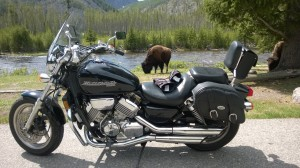 Bike and Bison