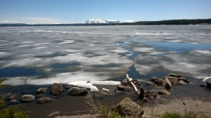 Ice Floes on Yellowstone Lake